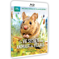 LA VIE SECRETE DES ANIMAUX DU VILLAGE Blu-Ray