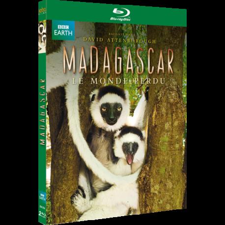 MADAGASCAR BR